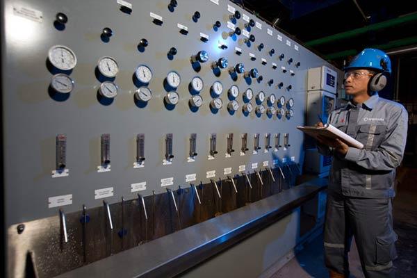 Audit Internal Perusahaan Energi Listrik