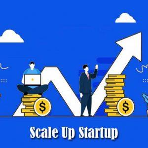 Scale Up untuk Bisnis Startup